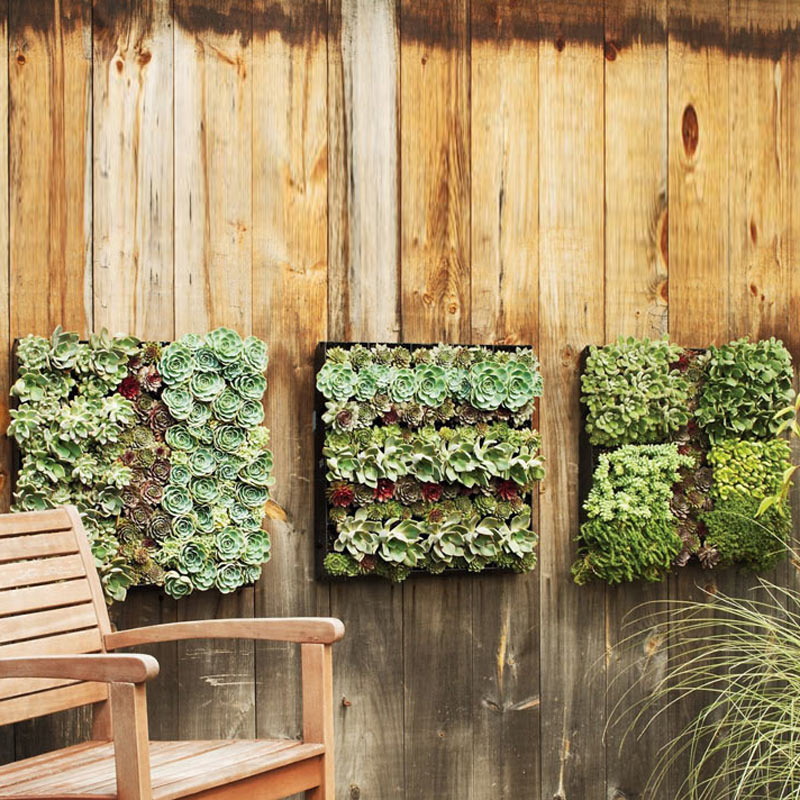 Outdoor Living Wall Planters - The Green Head on Garden Patio Wall Ideas id=39529