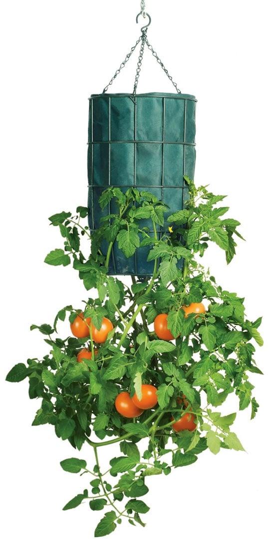 Garden Decor Catalogs