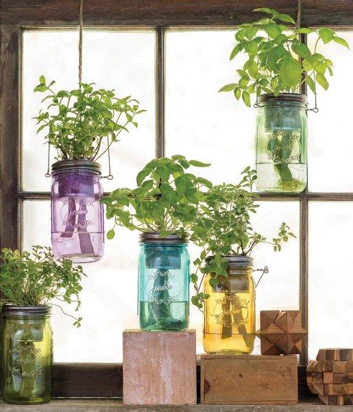 indoor herb garden Self-Watering Mason Jar Indoor Herb Garden - The Green Head