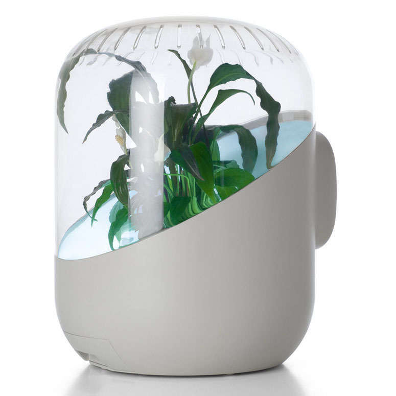 Andrea Plant Powered Air Purifier The Green Head
