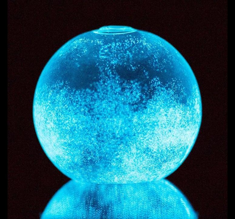 Dino Sphere Bioluminescent Plankton Mini Aquarium The
