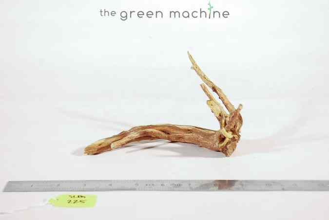 Product Image at The Green Machine