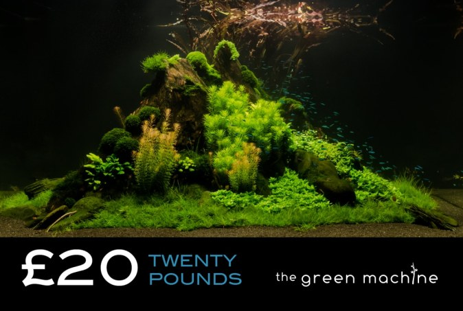 £20 Gift Voucher/Certificate for The Green Machine Aquascaping Store