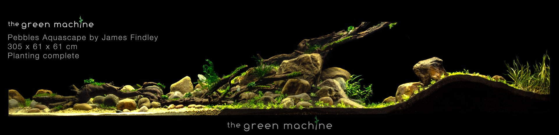 Aquascape By James Findley Pebbles In The Footsteps Of A Giant Aquascape Art The Green Machine