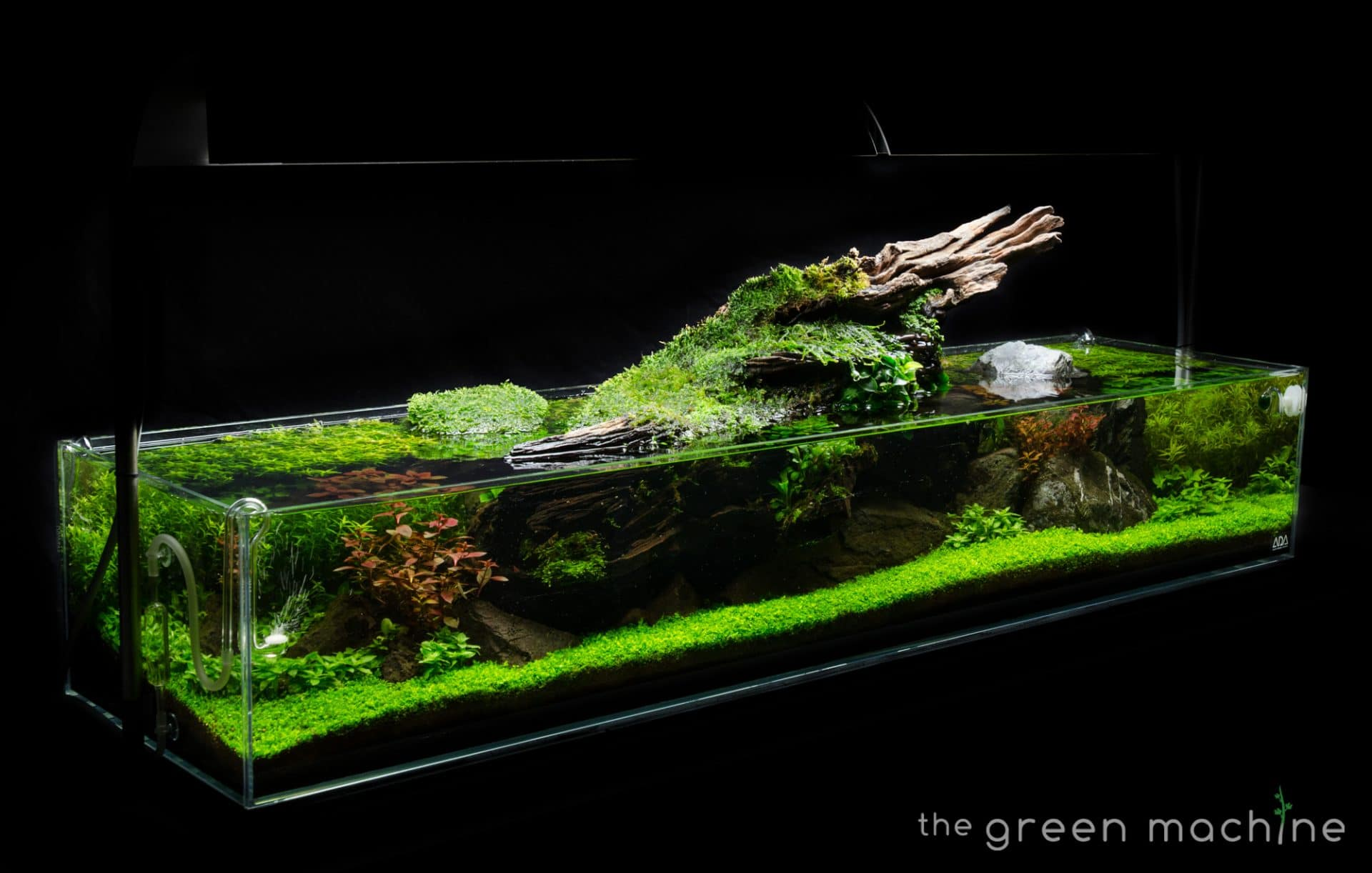Images Aquascape Art The Green Machine