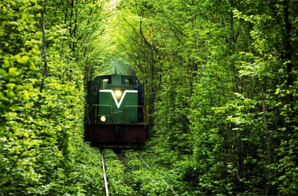 sustainable tourism responsible travel train