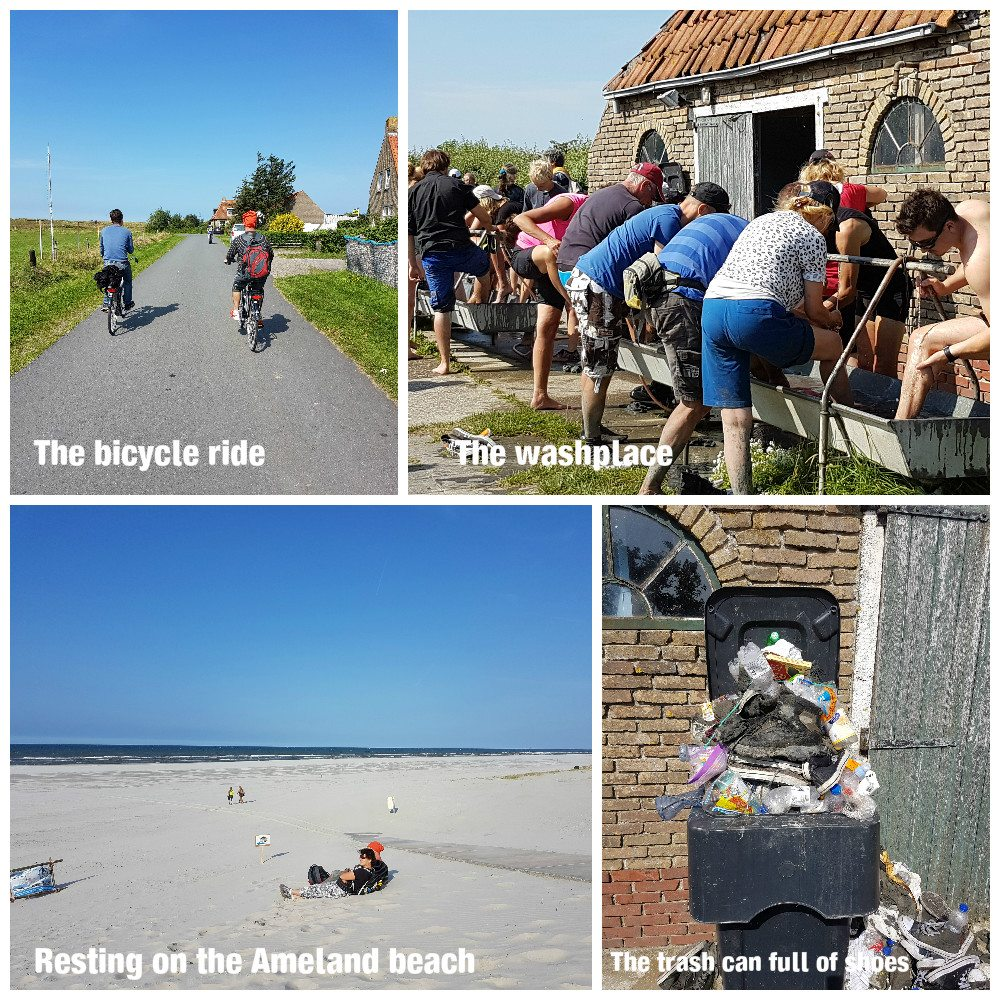wadlopen mudflat hiking what to do in the netherlands