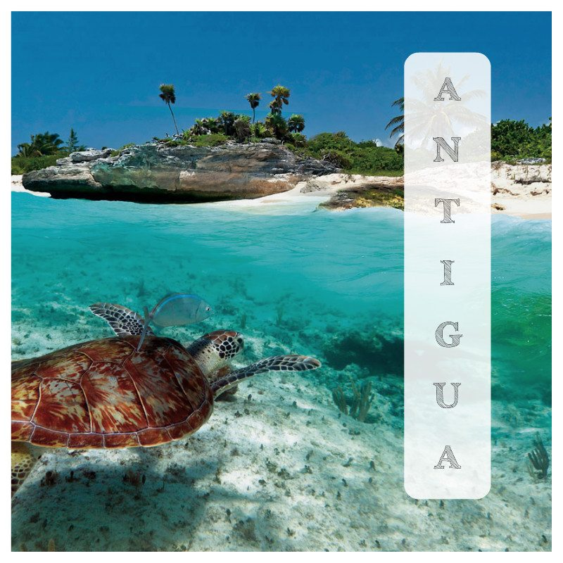 antigua destination 2017 top travel trends 2017