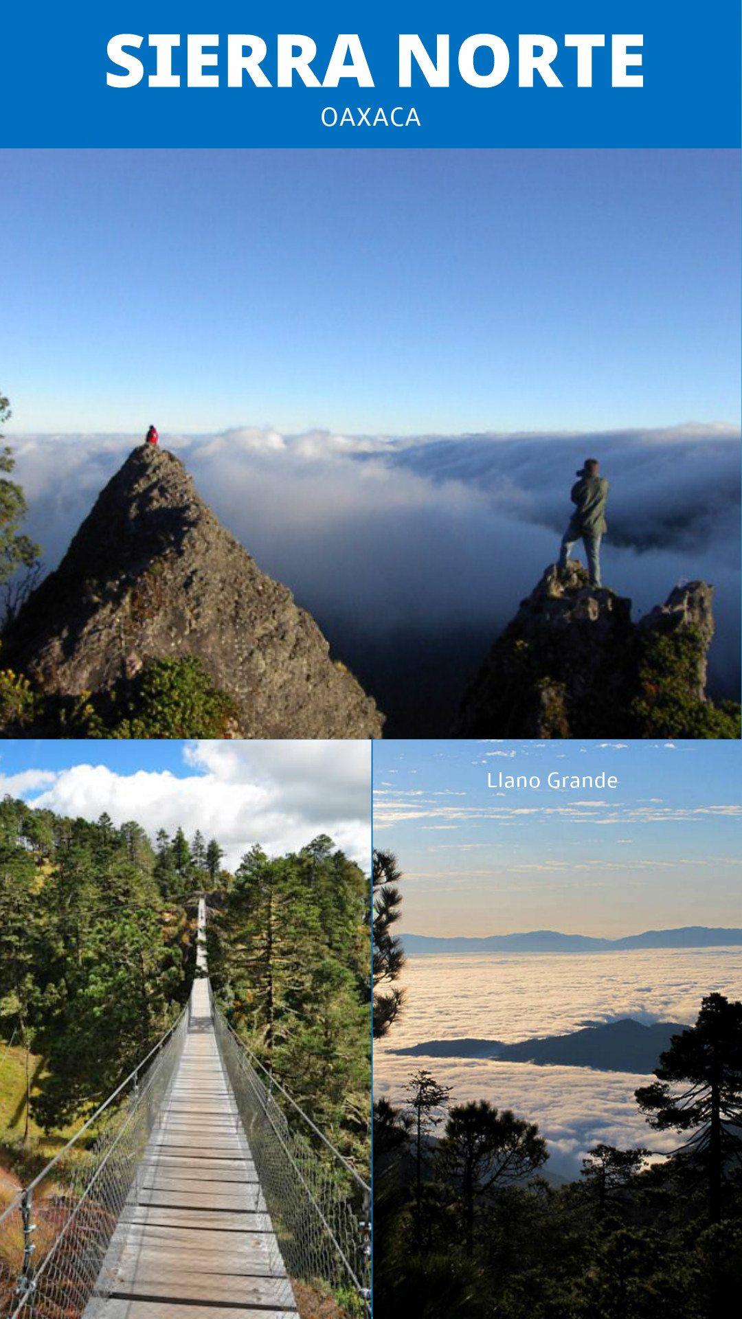 sierra norte ecotourisme oaxaca que faire a oaxaca