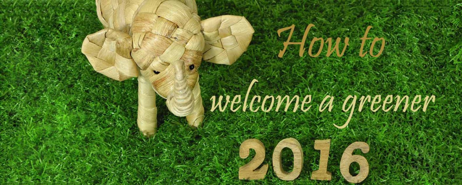 new year 2016 green ideas