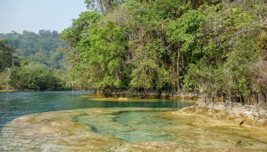 Laguna Miramar : a remote pristine oasis in Chiapas Mexico