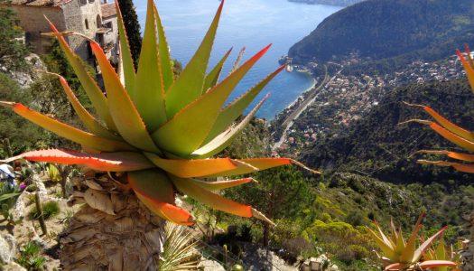 Nice – Cannes : 6 activités nature et aventure sur la Côte d'Azur