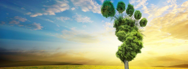 empreinte carbone tourisme durable voyager responsable voyage responsable