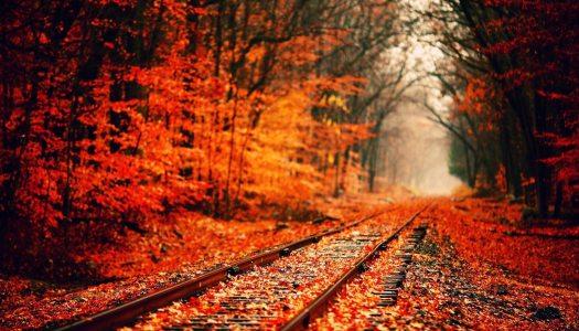 """Vacances en automne? Top des destinations """"vertes"""" de Septembre à Novembre"""