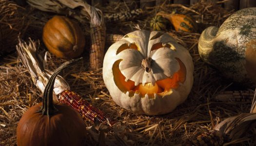 5 countries, 5 Halloween traditions, to get inspiration from