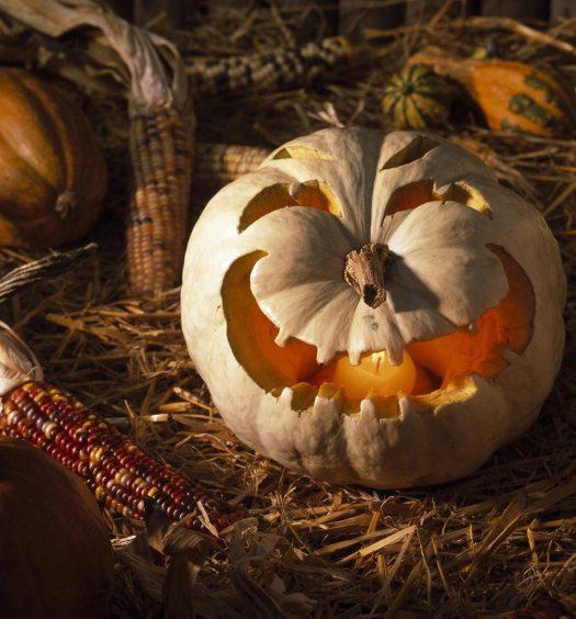 halloween dans la nature