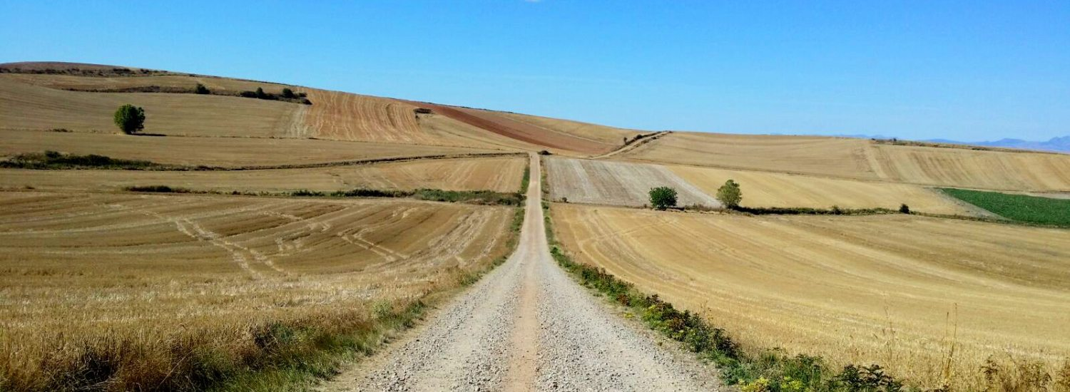 camino de saantiago de compostela the way of saint james does it worth it to go to fisterra