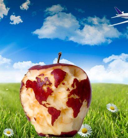 greenpick vegan vegetarien voyage voyager vacances