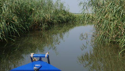 Odessa : Le delta du Dniestr en Ukraine, un joyau de nature en danger