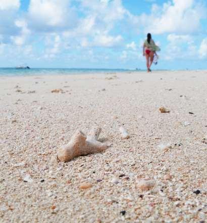 mauritius island secrets destination 2018