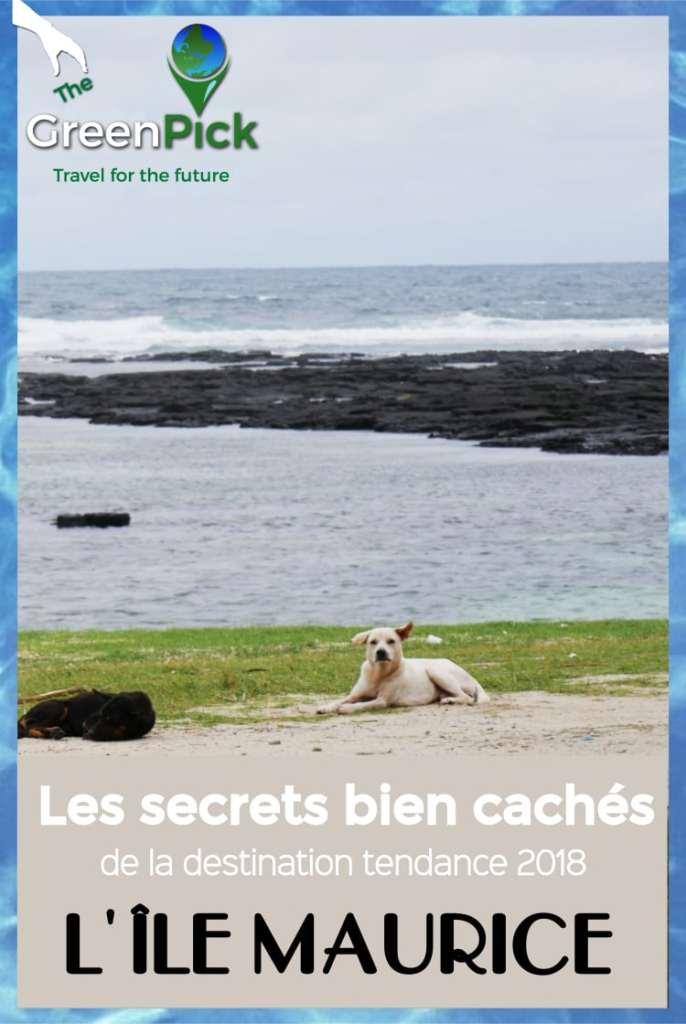 ile maurice tourisme responsable ecotourisme secrets que faire a l'ile maurice