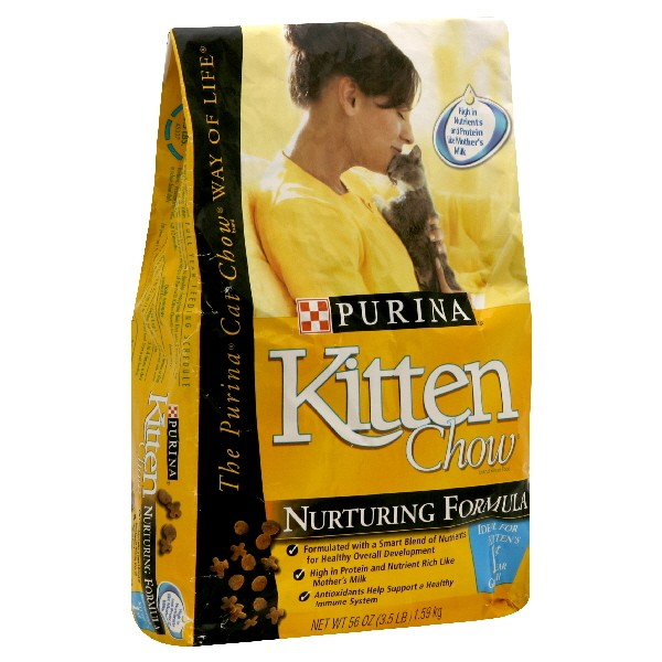 Image result for Kitten food