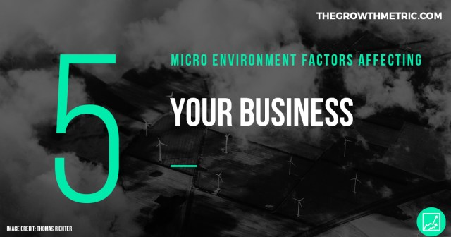 Micro environmental business factors