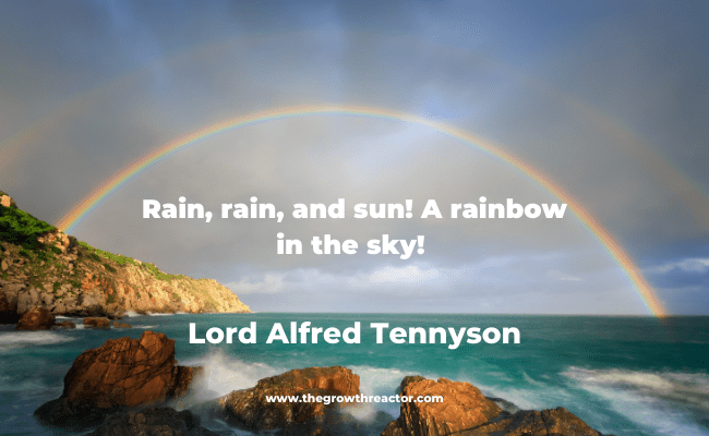 quote about rainbows