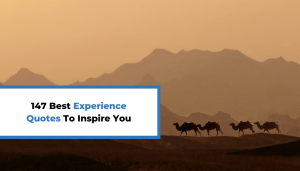 147 Best Experience Quotes To Inspire You