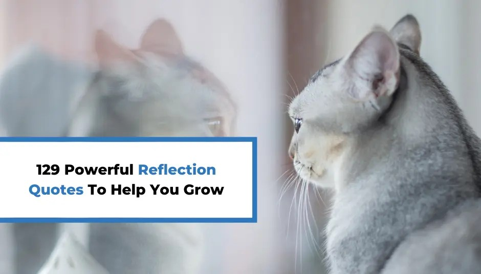 129 Powerful Reflection Quotes To Help You Grow