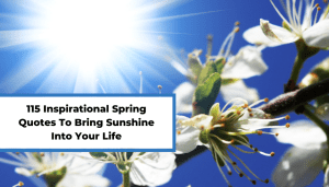 115 Inspirational Spring Quotes To Bring Sunshine Into Your Life