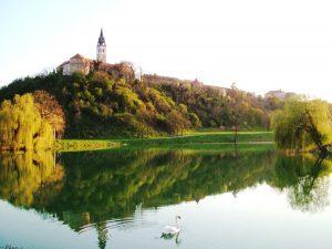ilok_panorama_crkva_tvrdava
