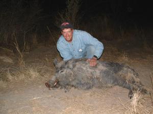 Bobs big pig