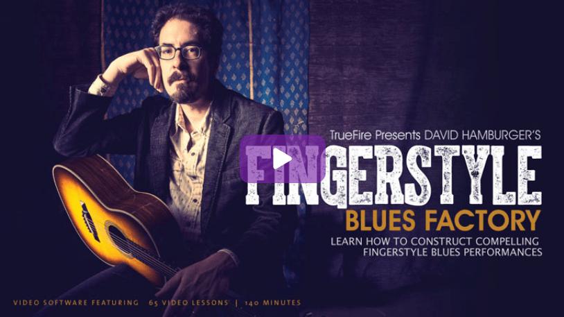 David Hamburger's Fingerstyle Blues Factory