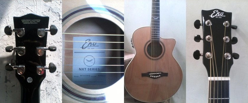 EKO guitars electro-acoustic steel-strings NXT series