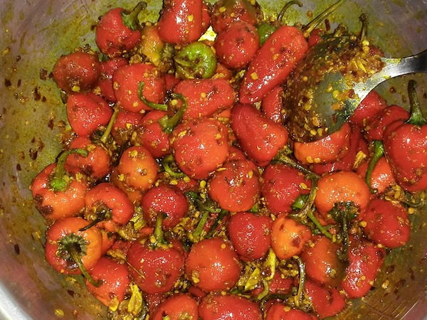 Dalle khursani mixed with spices mixture
