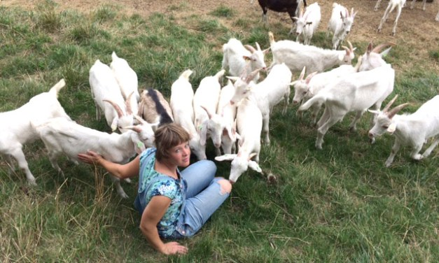 The Hungry Englishman: Nick Mosley meets farmer Lydia van Maurik to find out more about the resurgence in goat farming in the Netherlands.