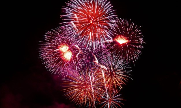 Firework-free Neighbourhoods for New Year Celebrations