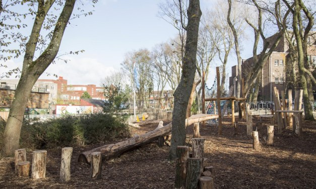 The Hague funding green schools: Good for children and climate