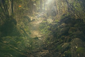 DISC Storytelling Event: Fairytales and Myths