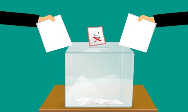 Voting and Elections – What to Do on March 20