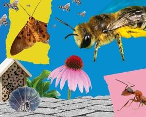 Urban Bugs: An Exhibition
