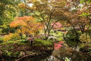 Japanese Garden Open Days