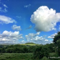 A walk on Orley Common