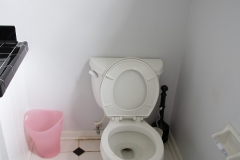 toilet_before