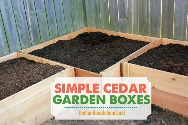 how to build a garden box - simple cedar garden boxes