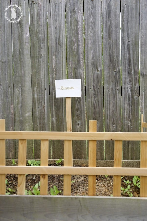fence_and_sign
