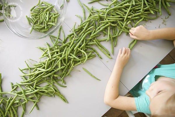 farmers_market_green_beans