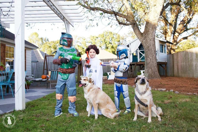 star_wars_costume