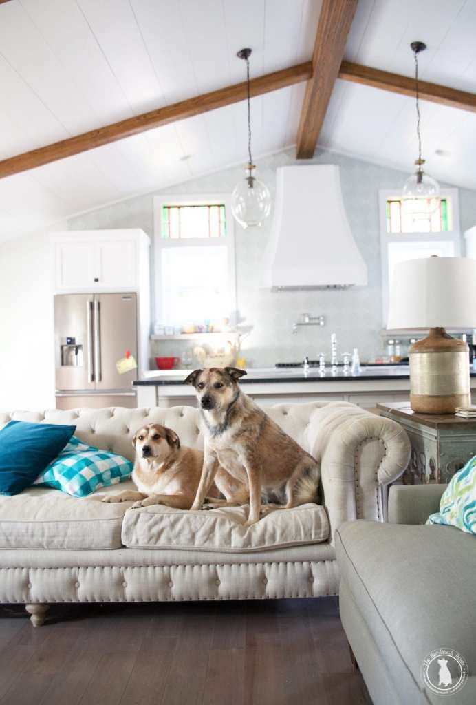 shiplap_your-ceilings